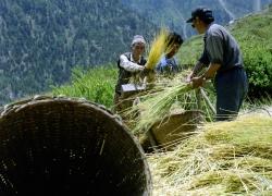 nepal-reisefotos-2-jpg