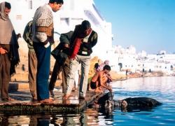 indien-reisefotos-6-jpg